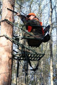 Selection of optimum tree stand sites is the key to deer hunting success.