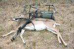 Barnett RS 150. This inexpensive crossbow killed this deer with a single arrow at 20 yards.