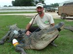 Muzzy's Mark Land with an 850 lb. GA gator.