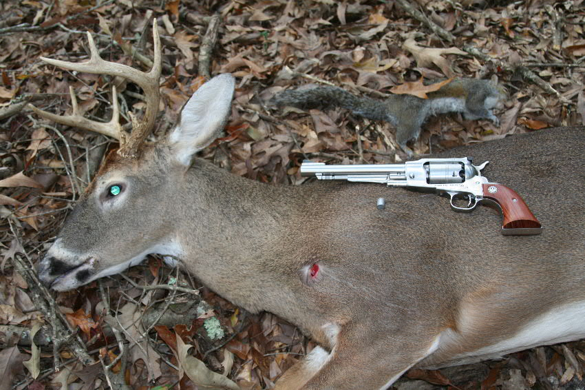 Ruger ... - Ruger Old Army Takes 8-Point Buck And Bonus Game With New 240-Grain