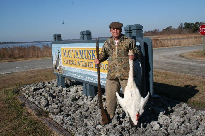 Author with swan at Lake Mattamuskeet NC