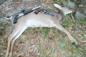Ossabaw deer taken with CVA Optima pistol and Traditions' Sheriff's Model 1858 Remington percussion revolver by Pietta.