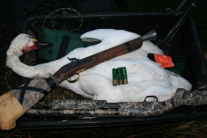 Blunderbuss and Mossberg 500 take joint credit for this swan.