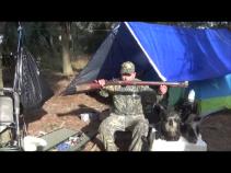 Hovey ossabaw hog with Brunswick Rifle